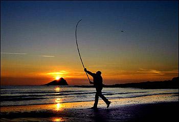 beach angler uk