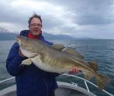Big Norway Cod